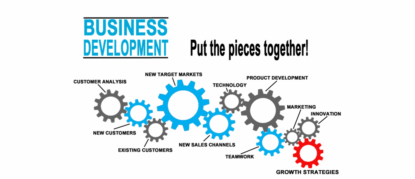 Our Business Development Services